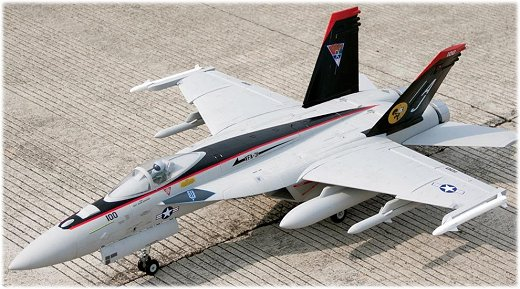 The Freewing F-18 EDF rc jet
