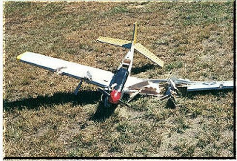 Warning: don't let these photos of crashed rc airplanes put you off ...