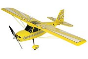 ParkZone Super Decathlon Brushless Plug-N-Play rc plane