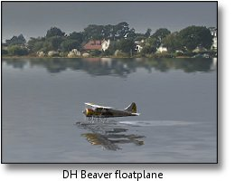 Phoenix RC flight simulator screenshot - DH Beaver floatplane