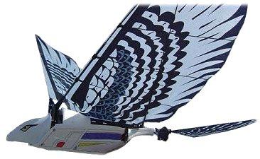 Cyberhawk RC ornithopter