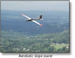 Phoenix RC flight simulator screenshot - aerobatic slope soarer