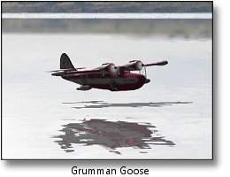 Phoenix RC flight simulator screenshot - Grumman Goose