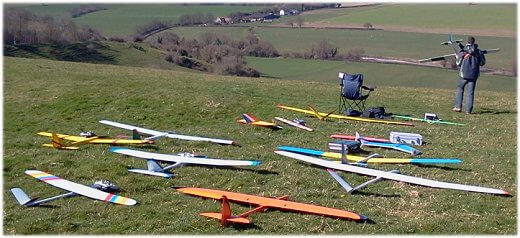 A mix of RC gliders and sailplanes