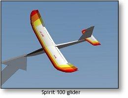 RealFlight G4 Spirit 100 glider