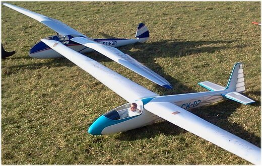 A brace of lovely scale rc sailplanes