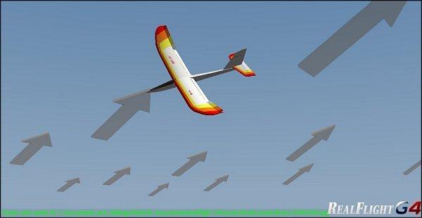 The RealFlight RC Flight Simulator
